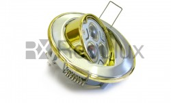 DL306 Two Tone Tilt Downlight